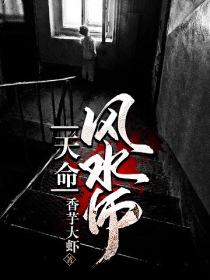 天命风水师小说封面