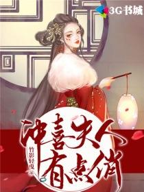 冲喜夫人有点俏小说封面