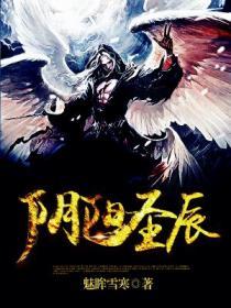 阴阳圣辰小说封面