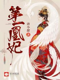 第一凰妃小说封面