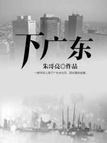 下广东小说封面