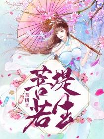 菩堤若生小说封面