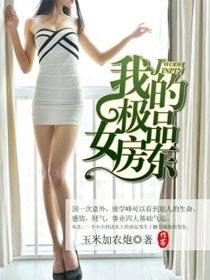 我的极品女房东小说封面