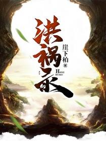 洪祸录小说封面