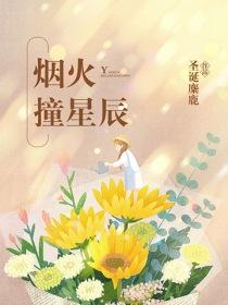 烟火撞星辰小说封面
