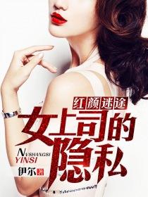 红颜迷途:女上司的隐私小说封面