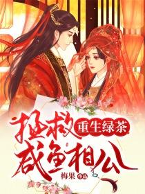 重生狂妃之明月罩西楼小说封面
