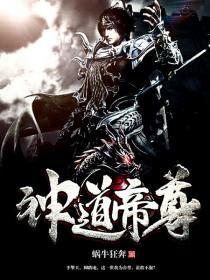 神道帝尊小说封面