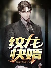 纹龙快婿小说封面